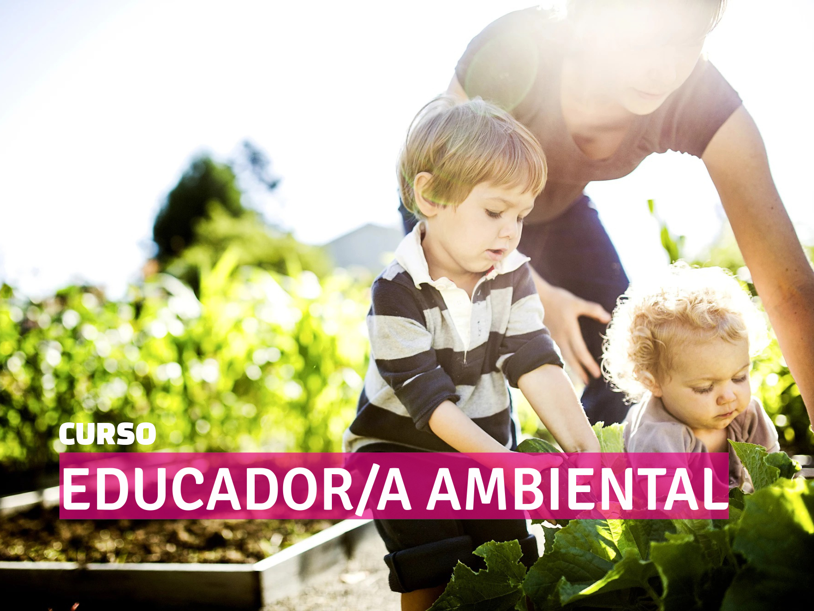 Curso EDUCADOR AMBIENTAL