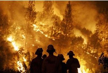 Incendios manifiesto IMBIV foto.jpg