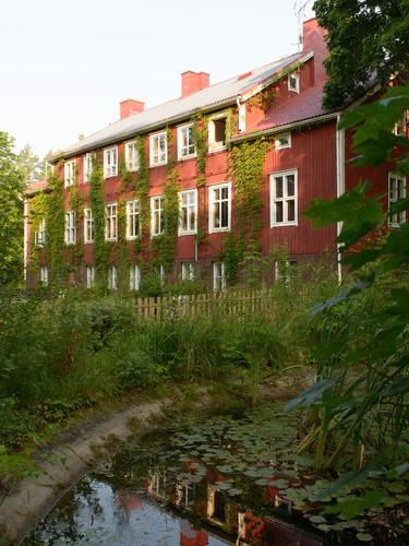 Huset sett från gårdens sida