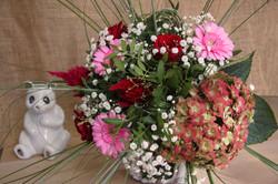 rose clair - hortensia