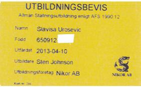 STÄLLNING SLAVISA.jpg