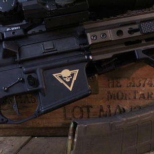 Custom AR Lower
