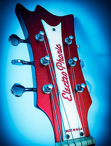 ElectroPhonic Innovations electric guitars