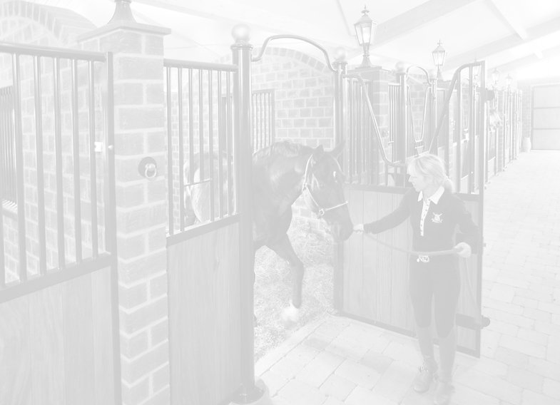 horse stall door