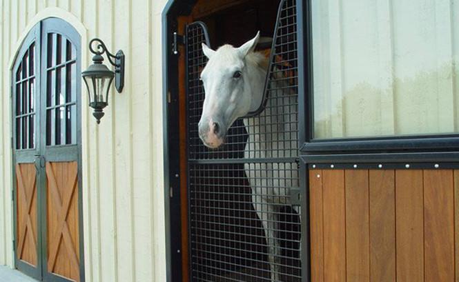 Wilson Farm, Virginia | Horse Stalls USA