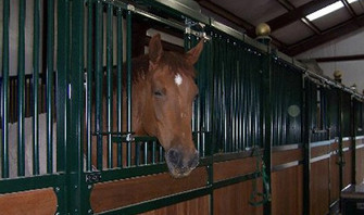 Yates Farm, New Mexico | Horse Stalls USA