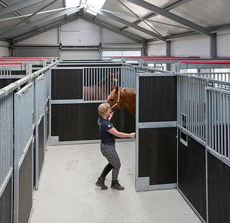 corton equestrian equipment