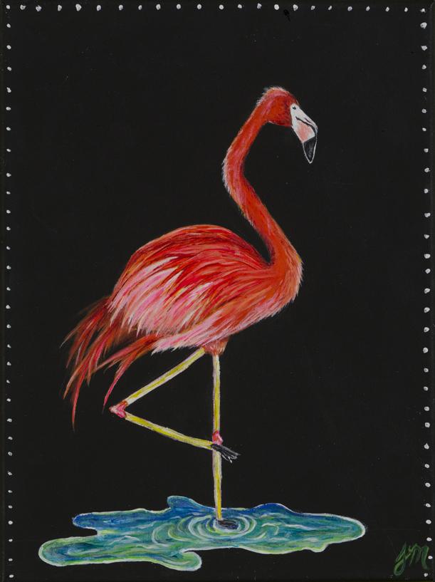 Fancy Flamingo_1 Medium