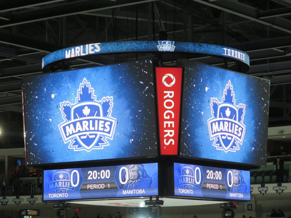Toronto Marlies (Volunteer Reward) 5