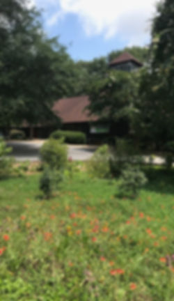 Sanctuary with Santuary Garden.jpg
