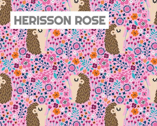HERISSONS ROSES.jpg