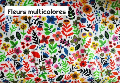 FLEURS MULTICOLORES_edited.jpg