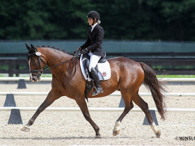 Mid-Ohio Dressage Association Wraps Mid-Ohio Classic I and II at Brave Horse Show Park