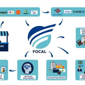 Introducing Focal Software