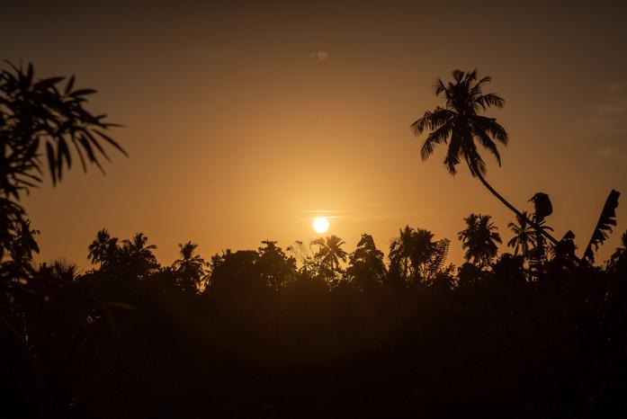 Your Dream Bungalow -  Sunrise.