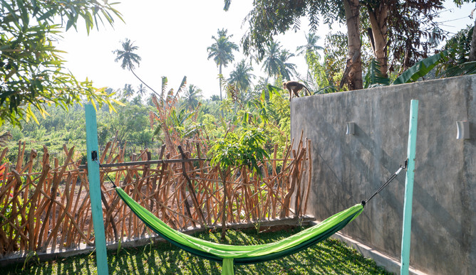 Your Dream Bungalow - Monkey + Hammock View.