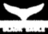 Black Eagle Logo White.png