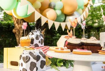 Cute Farm Theme Birthday