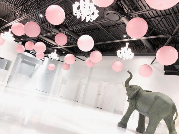 Ballons flottants & Elie l'éléphant