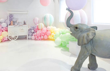 Installation magique avec notre doux Elie l'éléphant