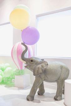 our big boy; Elie the elephant
