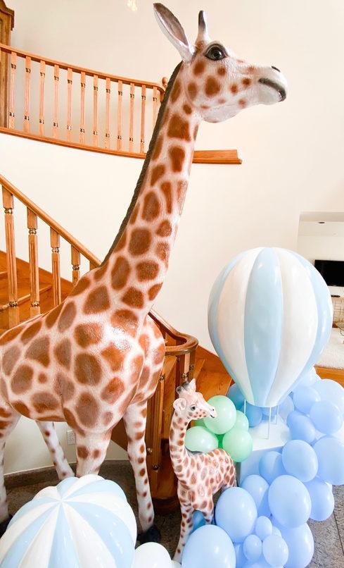Giraffe, & Hot Air Ballons adorned with Balloons
