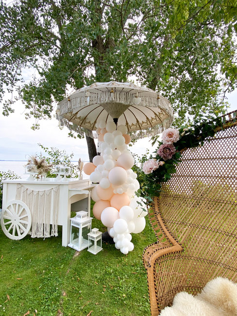 Our Cart and Boho Chair