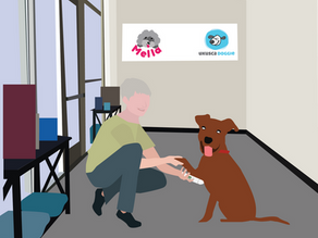 MELLA PET CARE OFFERS PET OWNERS PEACE OF MIND