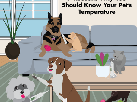 7 Reasons Why Knowing Your Pet's Temperature Is Important