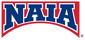 naia_bridge_logo.png