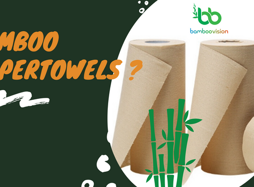 Paper towels made of bamboo: A truly sustainable alternative?