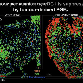"Global Immunotalks: ""Cells and pathways in immunity"" - Dr. Caetano Reis e Souza"
