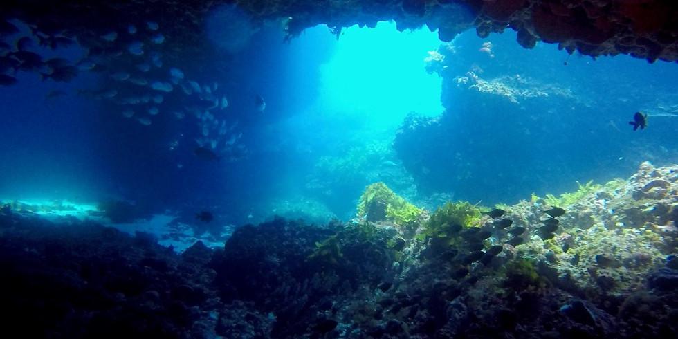 Mindarie - Two Folds Wreck & Gordon's Grotto