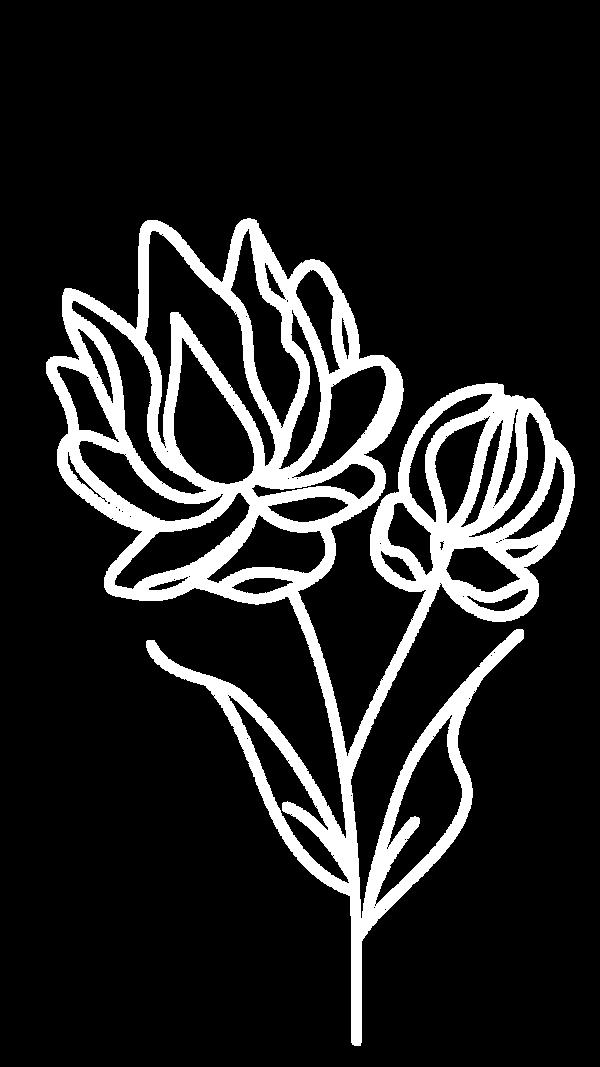 White flower.png