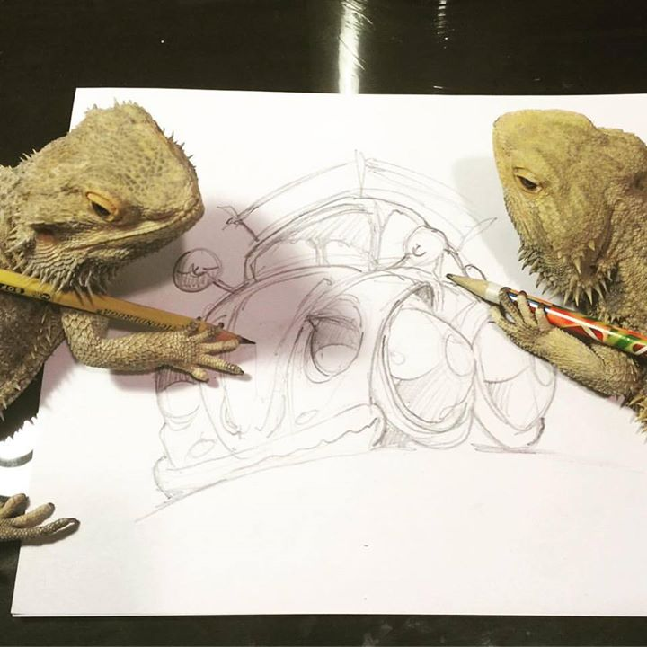 my bearded dragons
