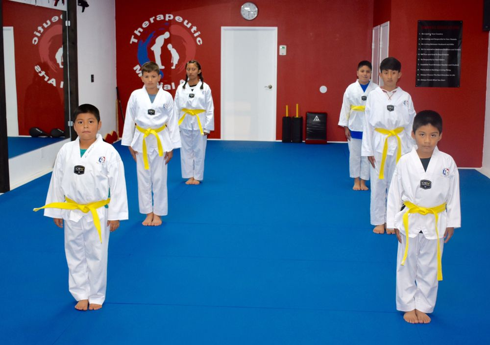 Yellow Belt Youth Class