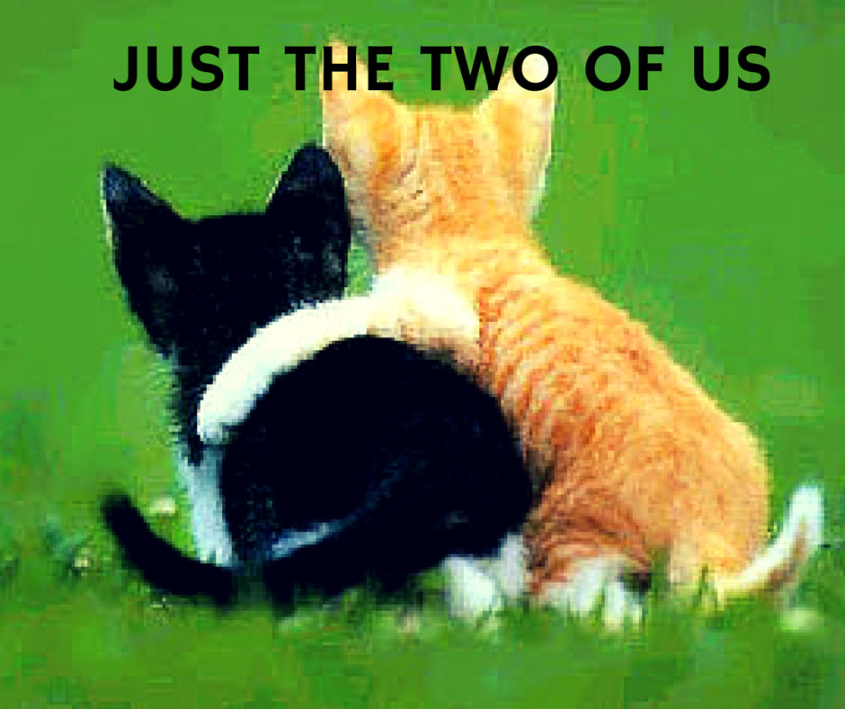 Just the tWO OF US.png