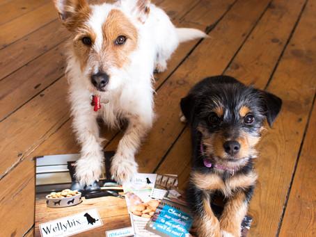 Wilbur & Paisley's Wellybix Fix