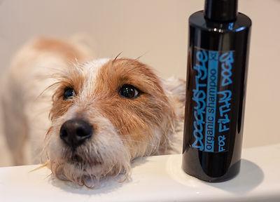 Wilb-Dog-Shampoo.jpg