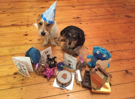 Wilbur's Birthday Bonanza!
