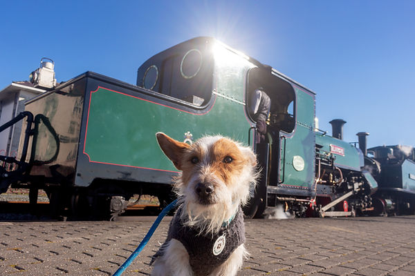 Wilby-Train.jpg