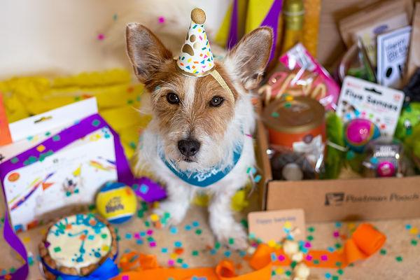 Wilb-7-Birthday.jpg