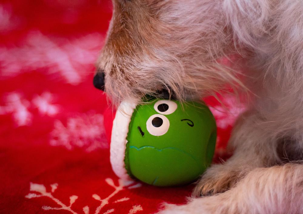 Petface Christmas Pea