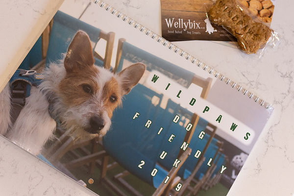 Dog-Friendly-Calendar-7.jpg