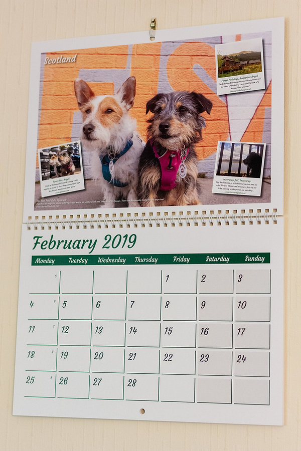 Dog-Friendly-Calendar-1.jpg