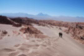 chile-1740804_1920.jpg
