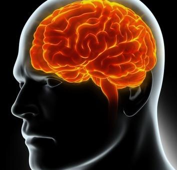 Dépression : explication physiopathologique de la piste de la neuro-inflammation