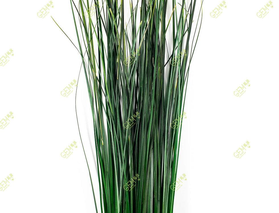 Беар трава стабилизированная