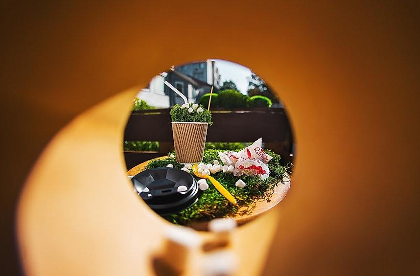 мох ягель для декора