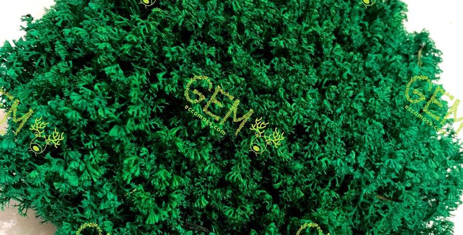 Ягель стабилизированный украинский GEM зеленая сосна
